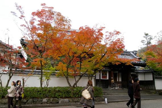 2009-11-19京都左京区 097.JPG