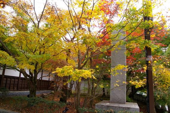 2009-11-19京都左京区 100.JPG
