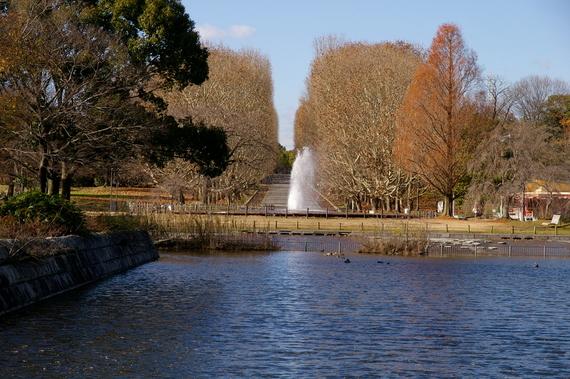 2009-12-18万博公園 038.JPG
