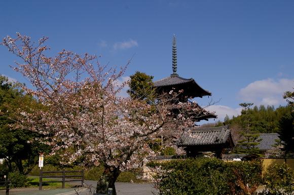 2003-3-30奈良を歩く。 045.JPG