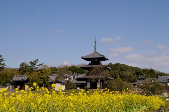 2003-3-30奈良を歩く。 075.JPG
